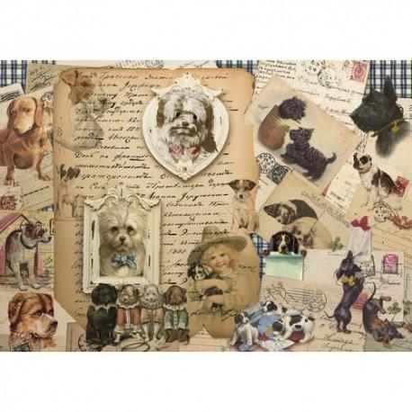 собачки с письменами